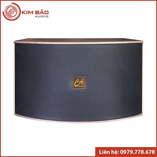 Mặt trước loa CA- Sound K312