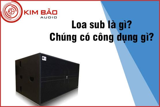 Loa sub là gì? Nên sử dụng loa sub khi nào?