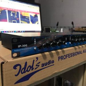 Thiết bị nâng tiếng IDOL IP300 Việt Nam
