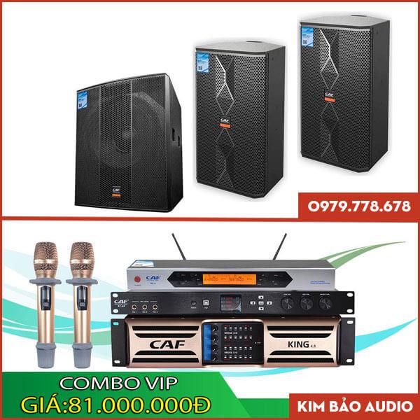 Bộ dàn Karaoke gia đình Combo Vip