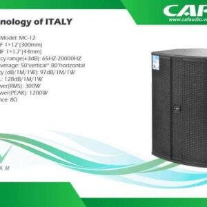 Loa CAF MC12